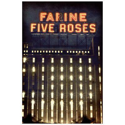 FARINE FIVE ROSES 2012 - bleu