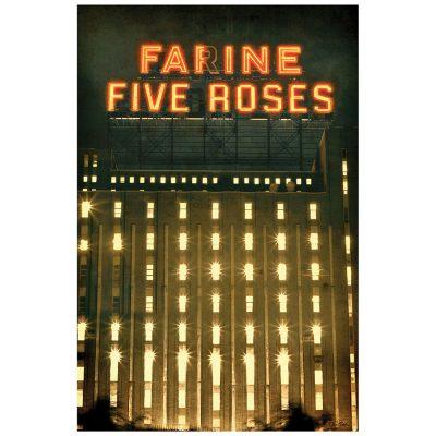 FARINE FIVE ROSES 2012 - brun
