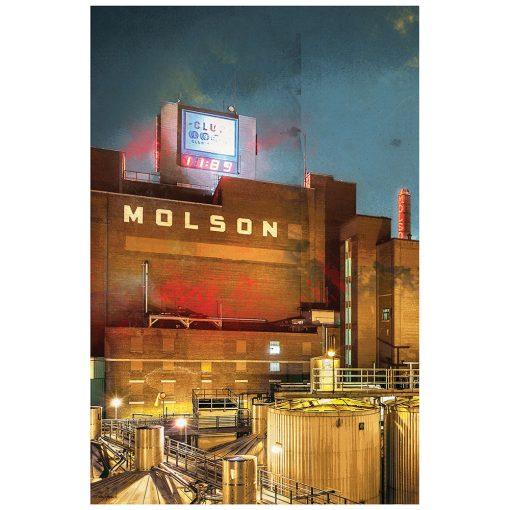 MOLSON 2016 1
